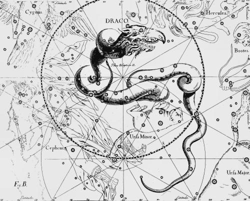 Созвездие Дракон из Атласа Uranographia Яна Гевелия (1690)
