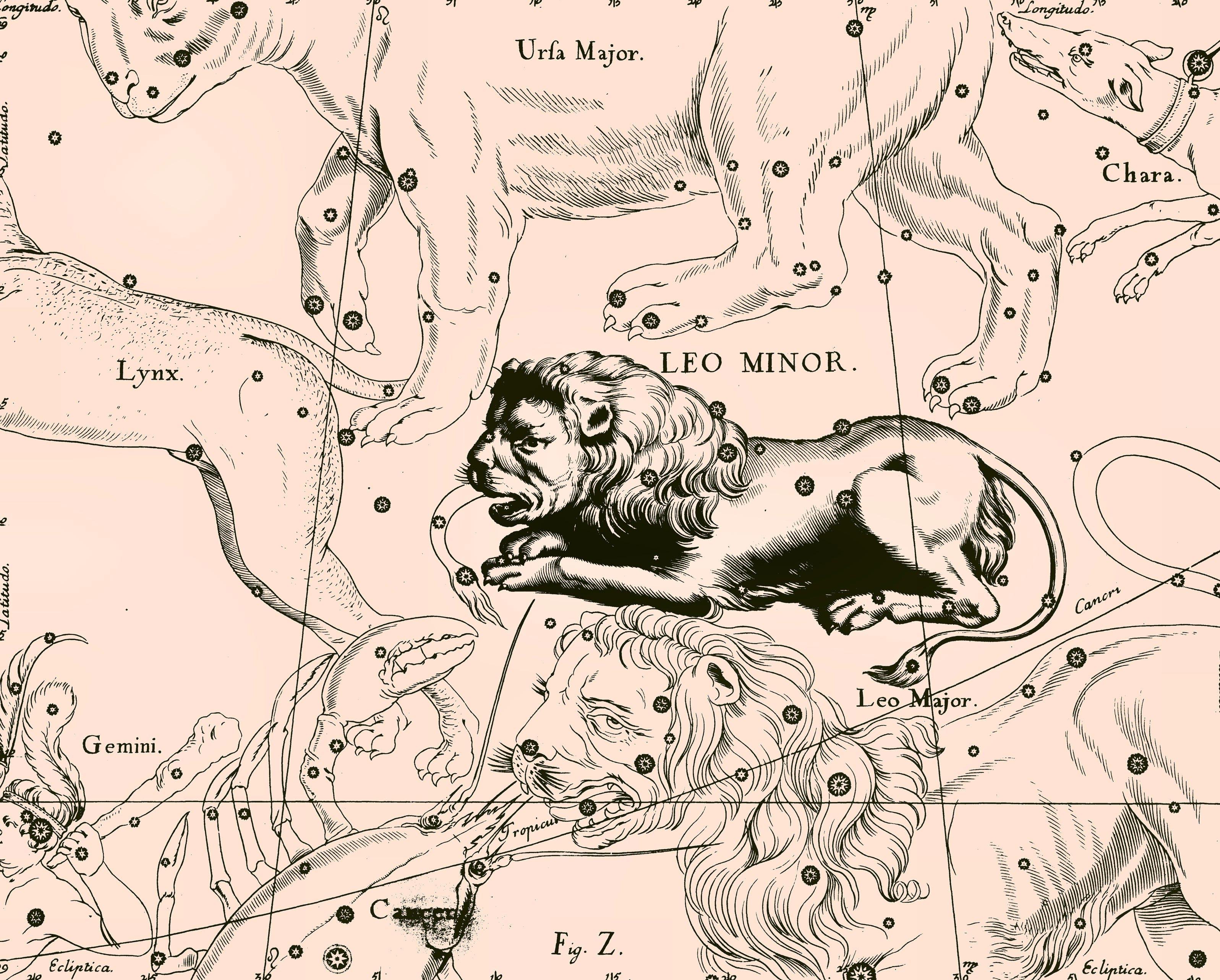 Созвездие малого льва из атласа