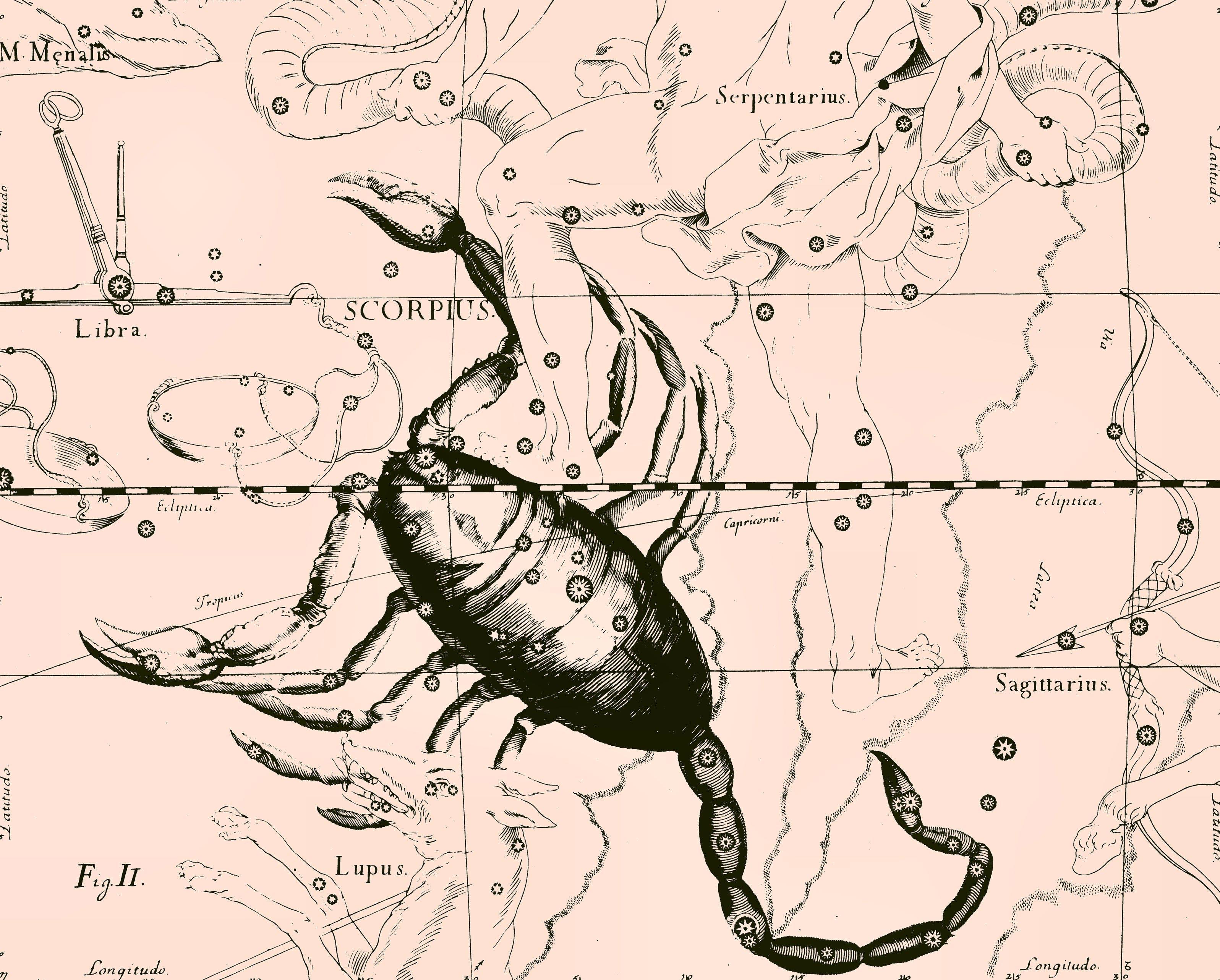 Созвездие скорпион википедия доклад 7901